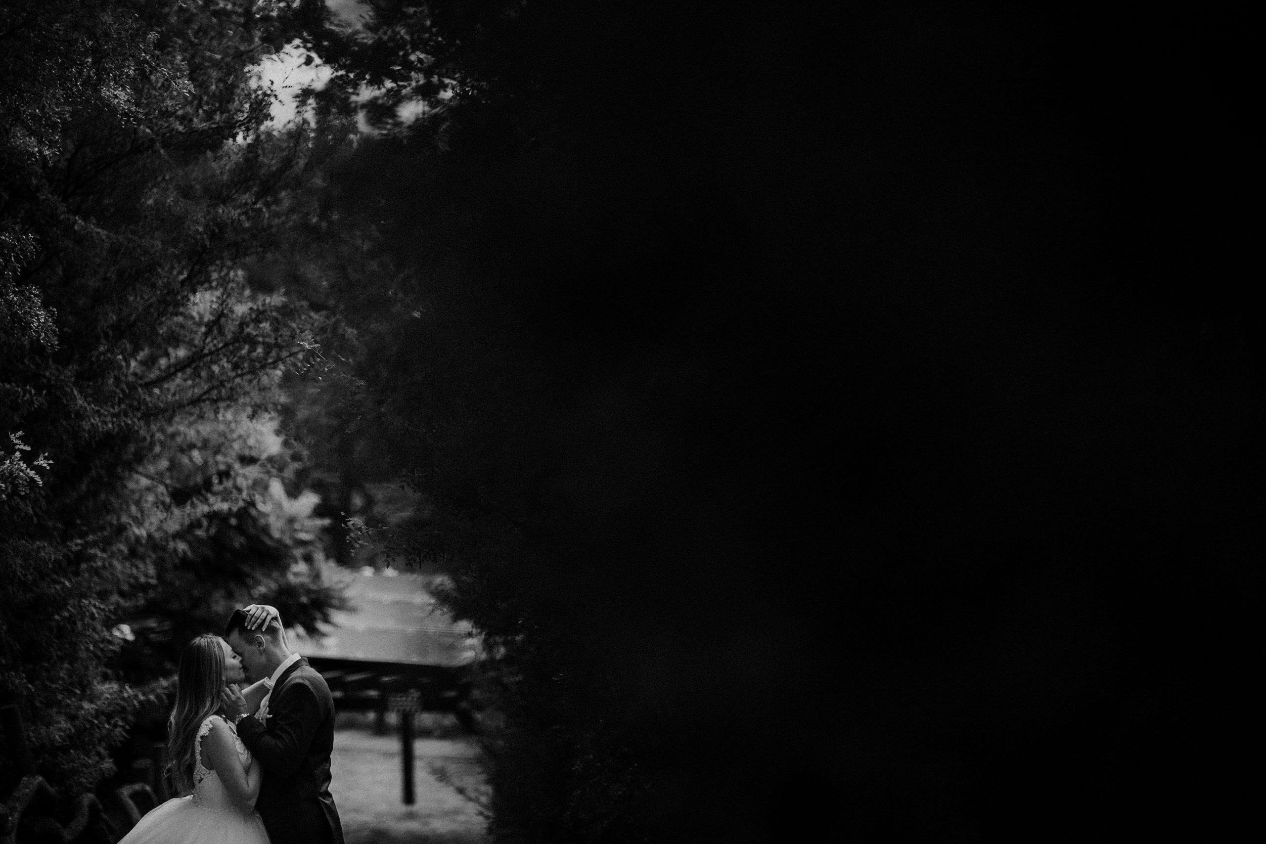 ED 9 sesja slubna plener niemiecki fotograf poznan Olandia scaled