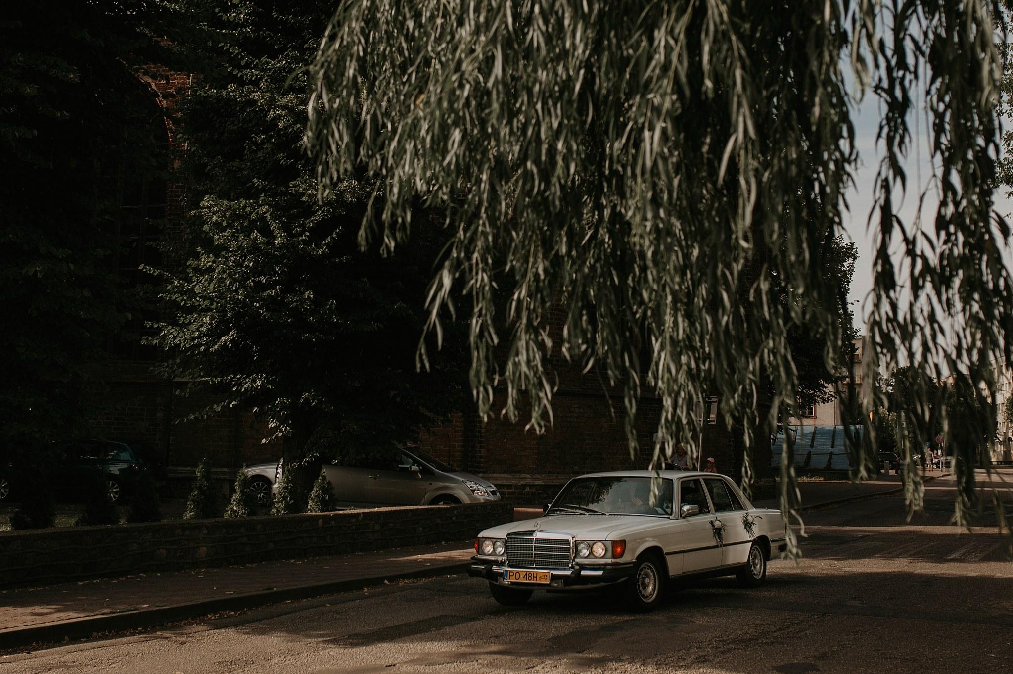 bukowy park slub krugphotography 86