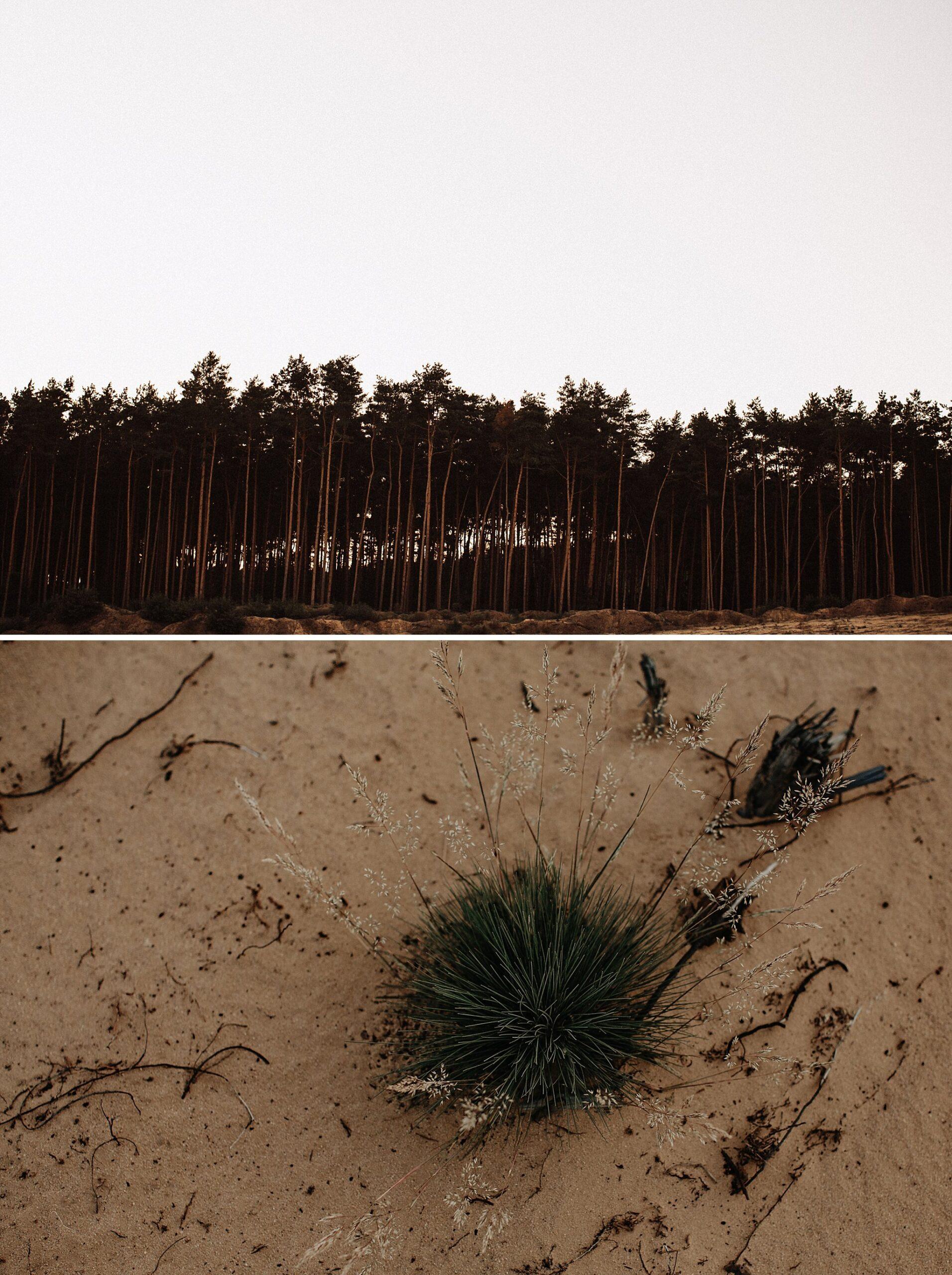 piekna sesja narzeczenska rustykalna romantyczna sesja na pustyni sesja zdjeciowa poznan krugphotography fotograf slubny z poznania fotografia slubna poznan 7800 scaled